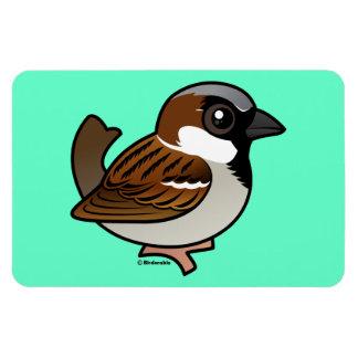 House Sparrow Rectangular Photo Magnet