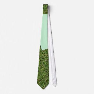 House Subject Tie