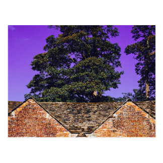 House Themed, Old Tile Roof House Under Trees And Postcard