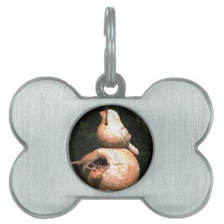 House Wren Bird House Pet Name Tag