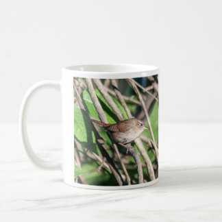 House Wren Coffee Mug