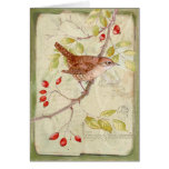 House Wren Collage Cards