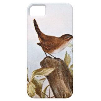 House Wren iPhone SE/5/5s Case