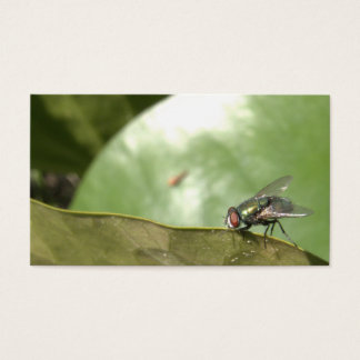 Housefly Business Card
