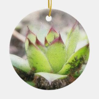 Houseleek - Sempervivum Ceramic Ornament