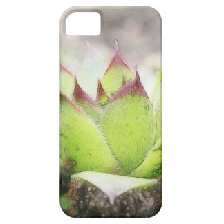 Houseleek - Sempervivum iPhone SE/5/5s Case