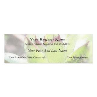 Houseleek - Sempervivum Mini Business Card