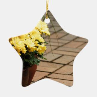 houseplant adorno navideño de cerámica en forma de estrella