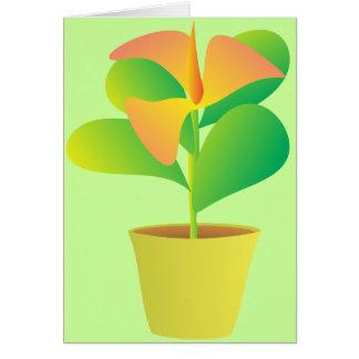 Houseplant con la floración tropical tarjeta pequeña