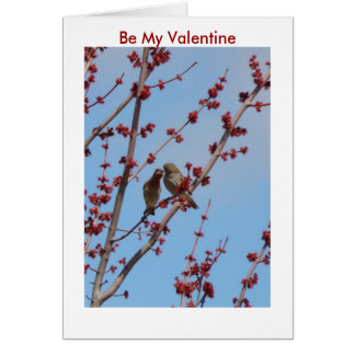 Houses Finches, Love Among The Buds, Be My Vale... Card