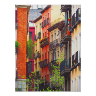 Houses in Madrid Poster