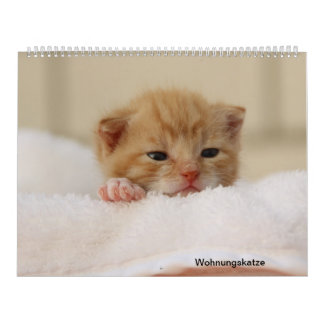 Housing cat calendar