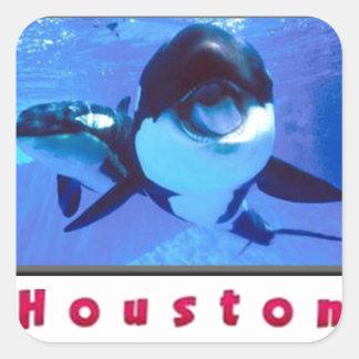 Houston Orca Whales Square Sticker