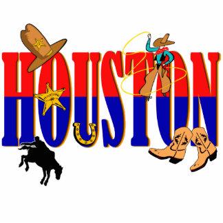 Houston Pics Acrylic Cut Outs