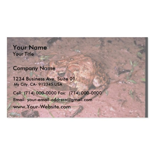 Houston Business Cards 170 Houston Business Card Templates