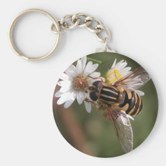 Hover fly basic round button keychain