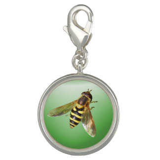 Hover fly ~ Charm