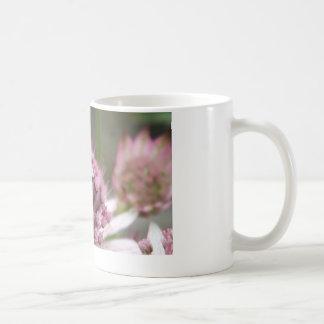 hover fly mug