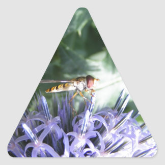 Hover fly on a purple flower triangle sticker