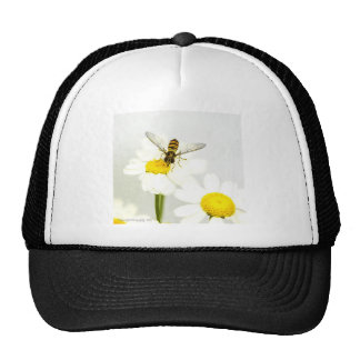 Hover fly on daisies trucker hat