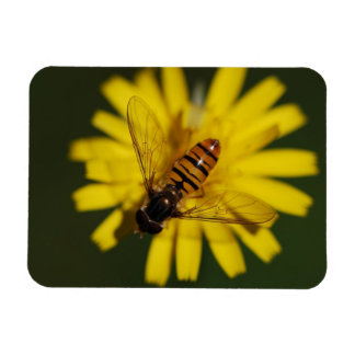 Hover Fly Photo Rectangular Photo Magnet