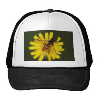 Hover Fly Photo Trucker Hat