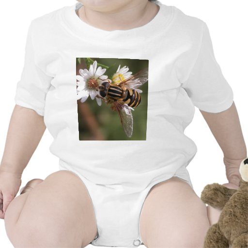 Hover fly rompers