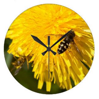 Hoverflies on Dandelions Clocks