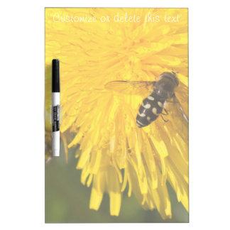 Hoverflies on Dandelions; Customizable Dry Erase Boards