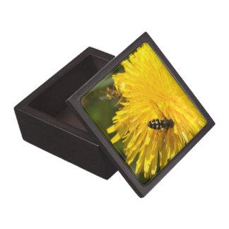 Hoverflies on Dandelions Premium Gift Box