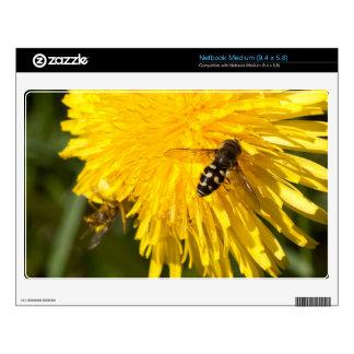 Hoverflies on Dandelions Decal For Medium Netbook