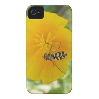 Hoverfly and Californian Poppy Blackberry Bold Cas iPhone 4 Case-Mate Case