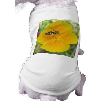 Hoverfly and Californian Poppy Dog Clothing