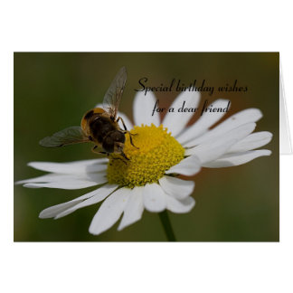 Hoverfly and Flower Friend BirthdayCard Card