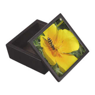 Hoverfly and Flower Premium Gift Box
