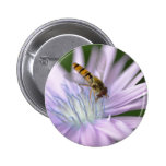 Hoverfly Button