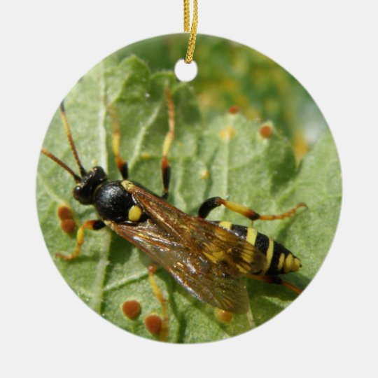Hoverfly Custom Birthday Ceramic Ornament
