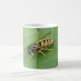 Hoverfly en una taza de la hoja
