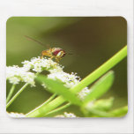 Hoverfly in Celery Mousepad