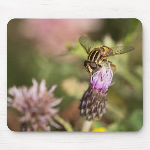 Hoverfly Mousemat
