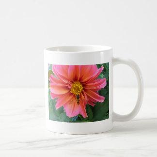 hoverfly mugs