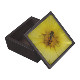 Hoverfly on a Marigold Premium Gift Box