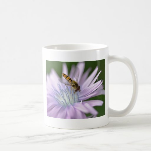 Hoverfly on chicory more flower coffee mug