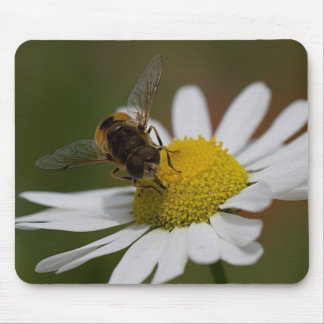 Hoverfly on Sea Mayweed Mouse Pad