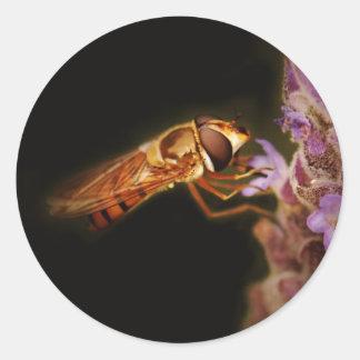 Hoverfly Pegatina Redonda