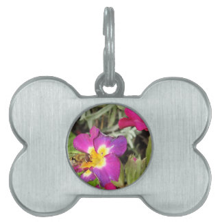 hoverfly resting pet name tag