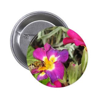 hoverfly resting pinback button
