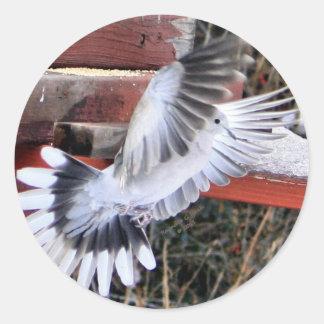 Hovering Dove - Round Sticker