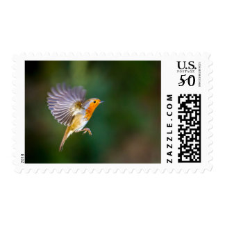 Hovering robin US postage stamps