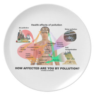 How Affected Are You By Pollution? (Physiology) Dinner Plate